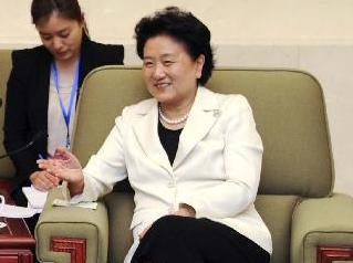 劉延東副総理が日本の与党女性国会議員団と会談