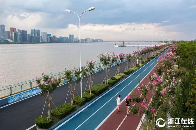 杭州の最も美しいランニングコースでサルスベリが満開に