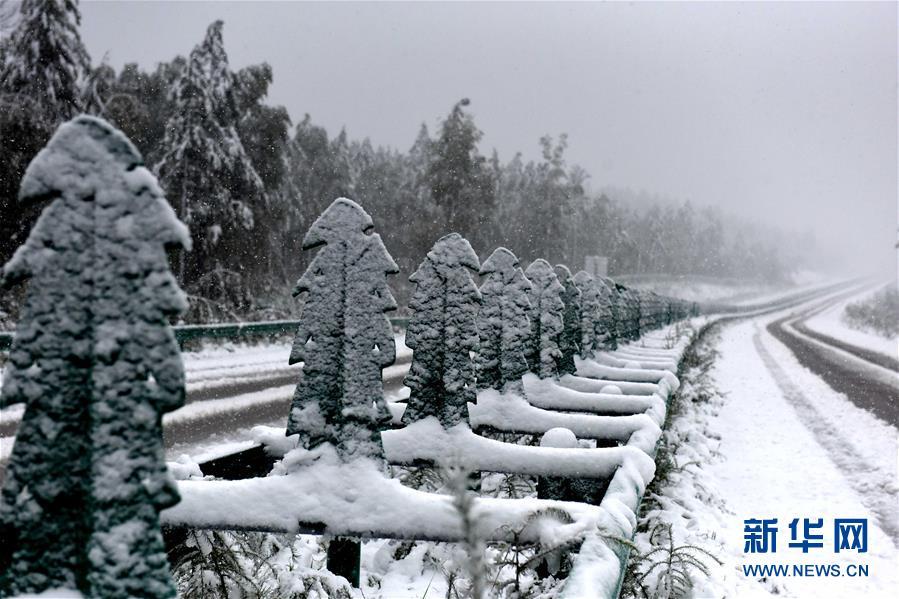 黒竜江省で8月に初雪を観測