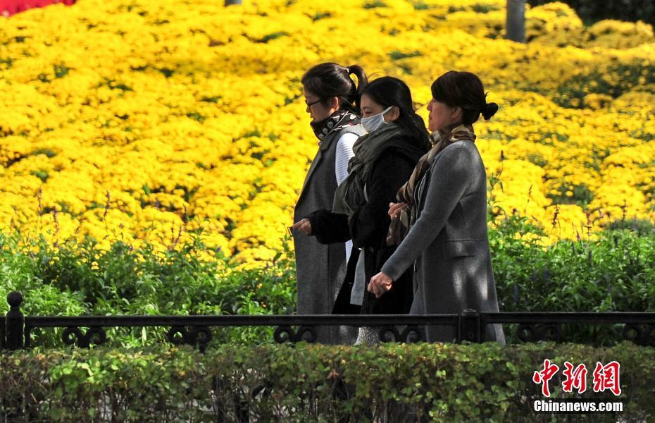 辽宁沈阳最低气温降至0℃ 市民穿秋装出行