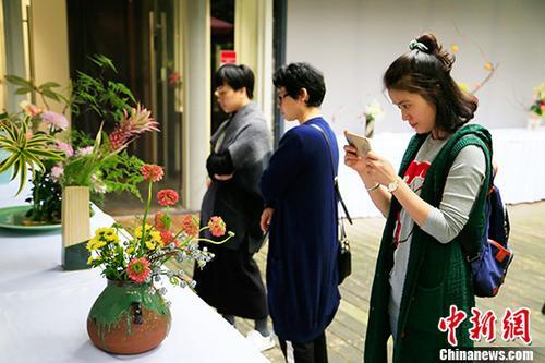 「雁行-中日書画・華道展」が杭州で開幕 華道と書画の上質なコラボ