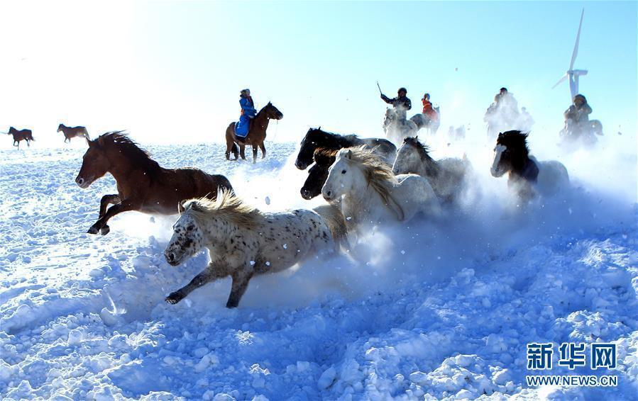雪原で馬馴らしをする牧畜民  冬季観光シーズンの内蒙古