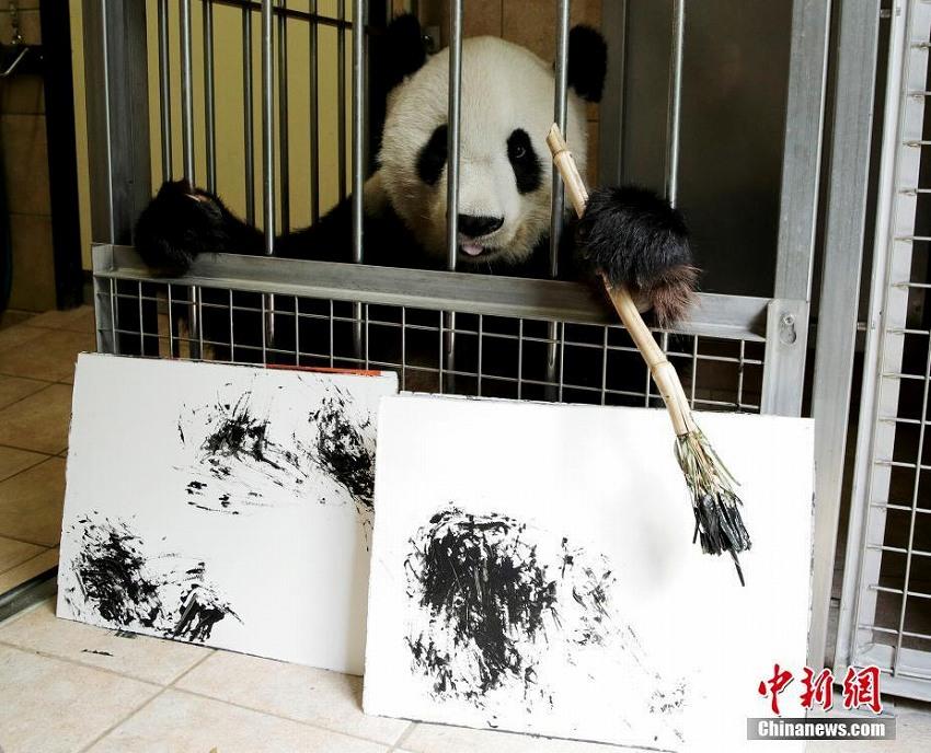 オーストリア・シェーンブルン動物園のパンダ画伯、水墨画を披露