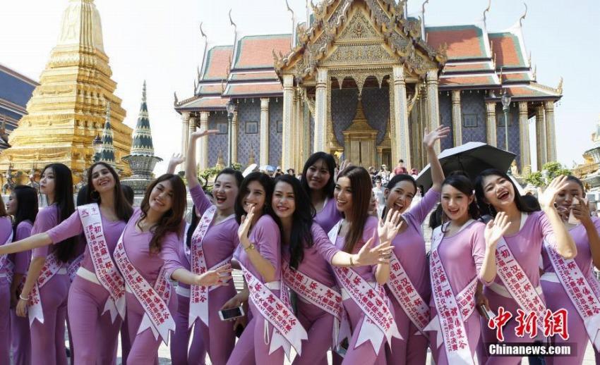 ファイナリストの美女たち、タイのバンコクに集結 エチケットコンテスト