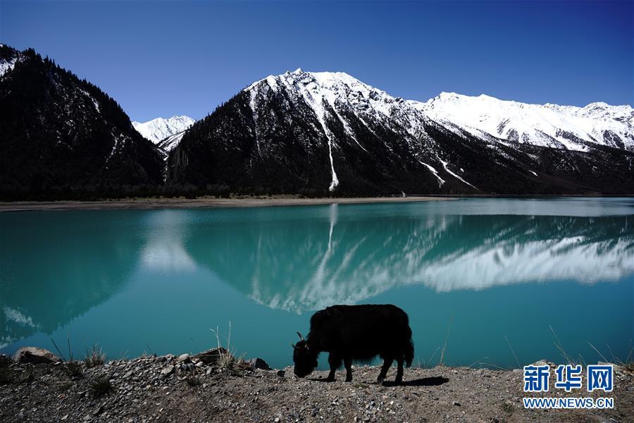 チベット10年ごとに気温が0.28度上昇 温暖化傾向明らかに