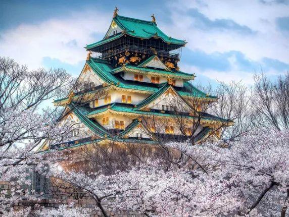 大阪ヨガ教室[春花爛漫・心機一轉]お花見のご案内